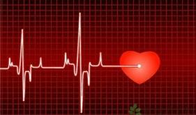 植入型心律转复除颤器(ICD)