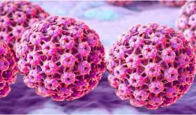 女性健康杀手——人乳头瘤病毒